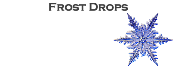 Easy Vapors - Frost Drops